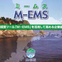 M-EMSミームス