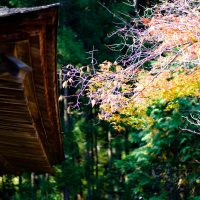 神護寺(京都)